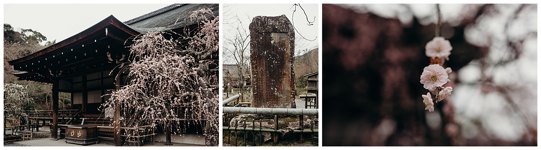JAPAN-92.jpg